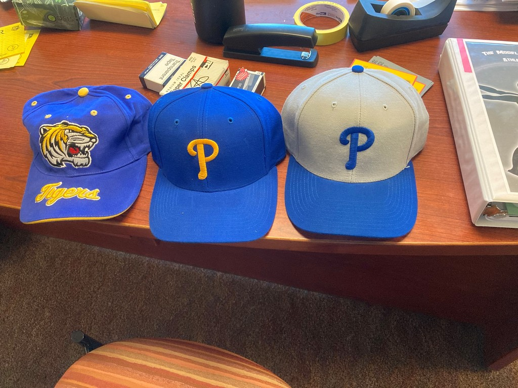 Tiger Reward Hats